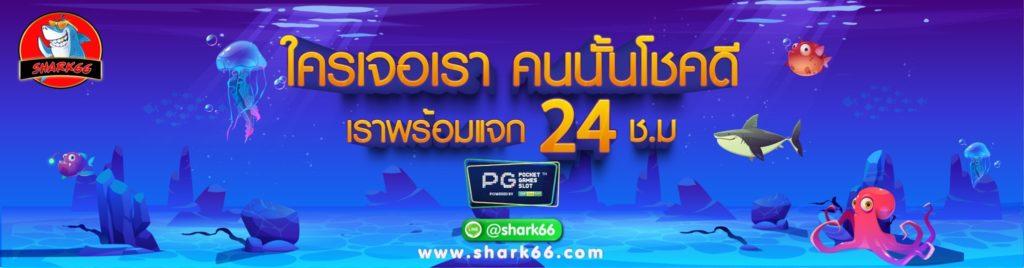 shark66 แจก โปรโมชั่น พีจีสล็อต