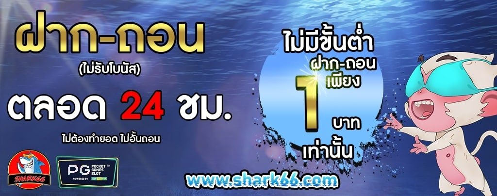 Shark66_210105_1.jpg