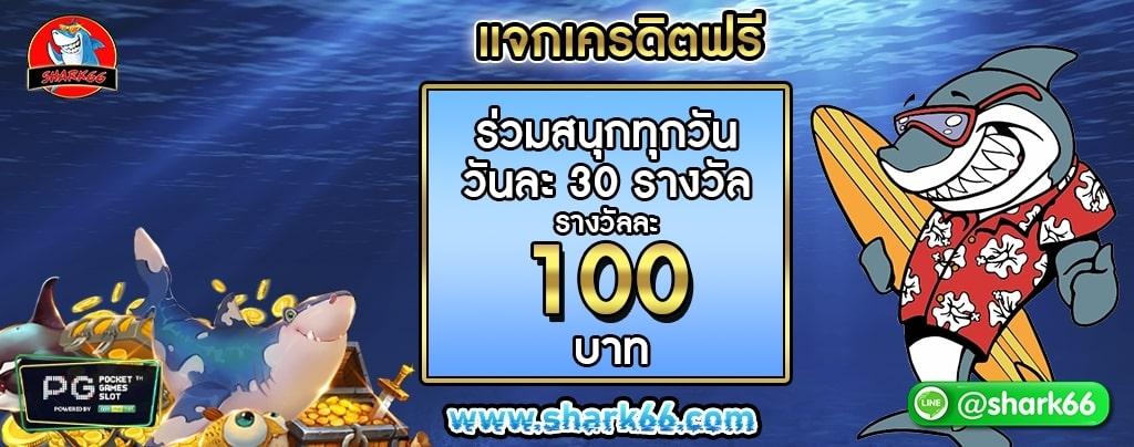Shark66_210105_7.jpg