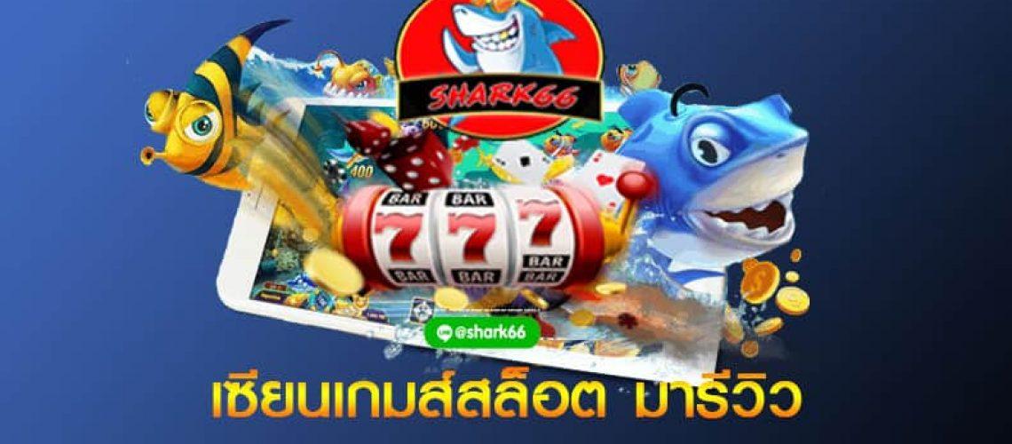 slot pg shark66