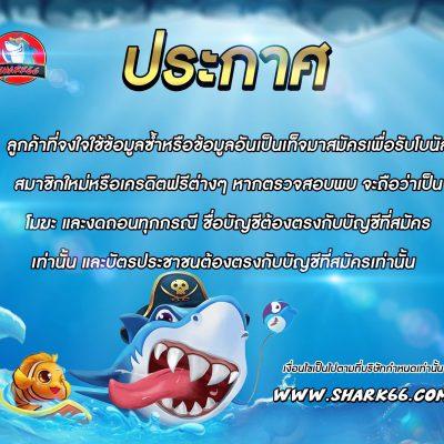 ติดต่อ admin shark66